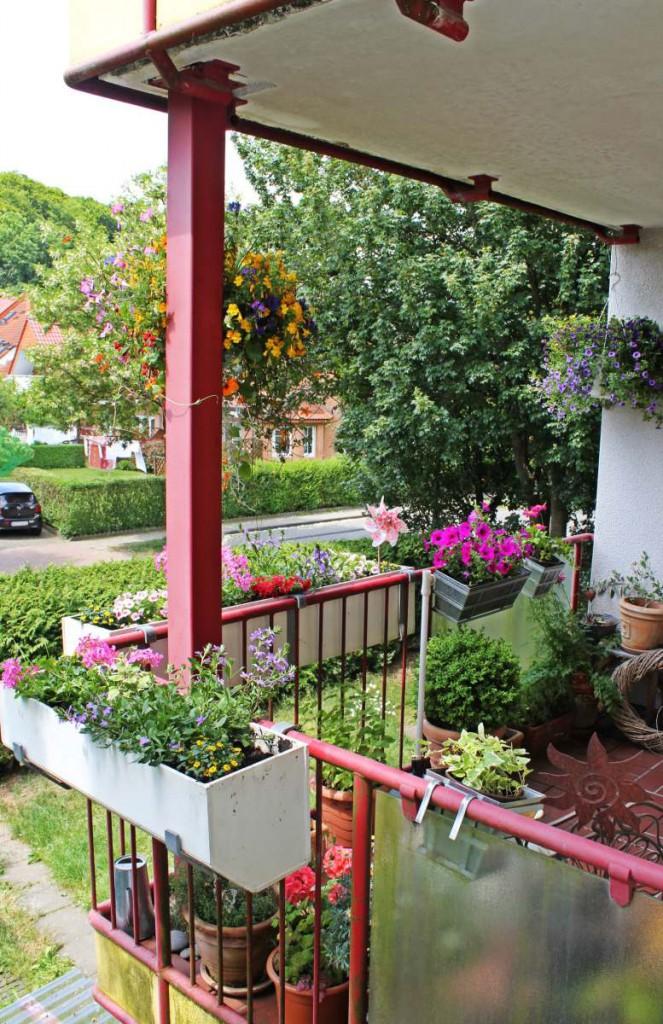 Balkon Frühsommer