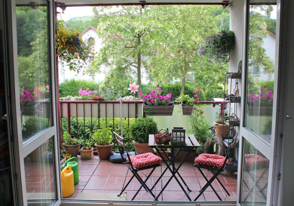 Die zarten Anfänge - alle Pflänzchen noch süß und klein, frisch gepflanzt - damals, als wir noch Sommer hatten.
